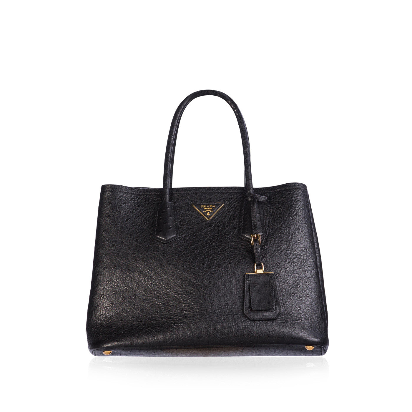 e751ae459f61 Prada - Ostrich Double Bag | Bagista