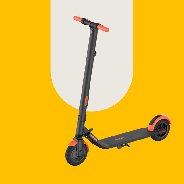 Segway Ninebot ES1L Electric Kickscooter e-Scooter Scooty