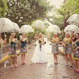 Clear Dome Umbrella Packages