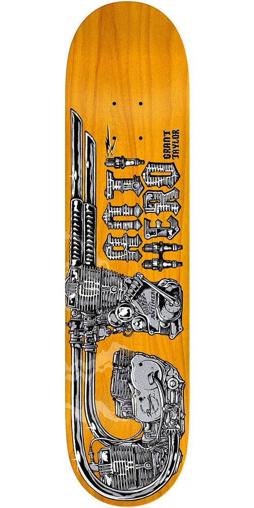 Anti-Hero Taylor GT Revving - Brown - 8.06in x 31.8in - Skateboard Deck