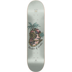 Globe Established At Sea - Diver - 8.25in - Skateboard Deck