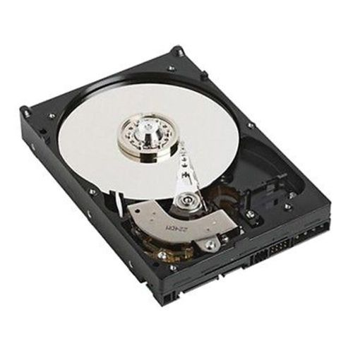 Dell 7200 RPM Serial ATA Server Hard Drive 1 TB - 400-AFYB