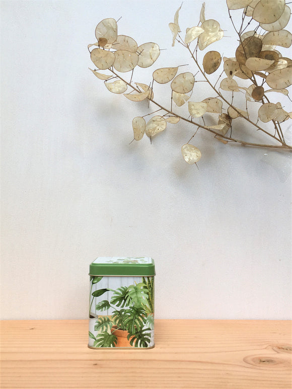 Urban Jungle Tin (100g)