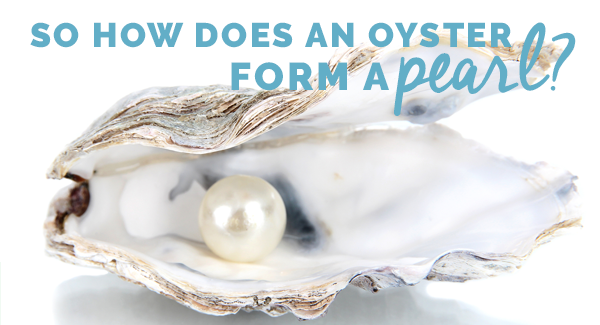 So How does an oyster form a pearl?