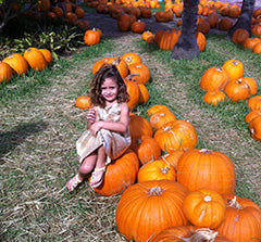 Picking Pumpkins without Jewelry