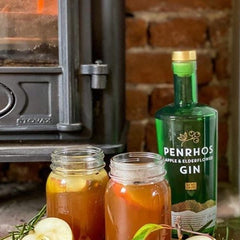 Hot Spiced Gin and Apple Punch