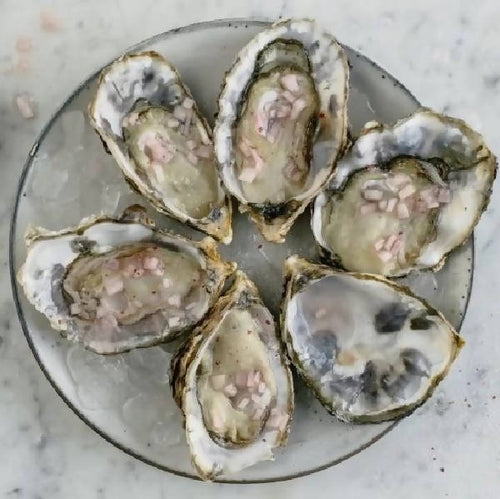 A dozen oysters delivered to your door