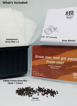Load image into Gallery viewer, Edible Forest Grow Kit - Black Tuscany Kale [Microgreen]