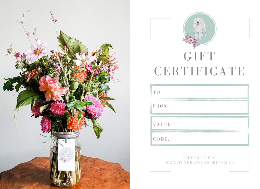 Physical Gift Certificate