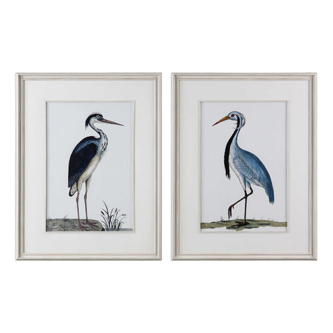 BIRDS FRAMED PRINTS