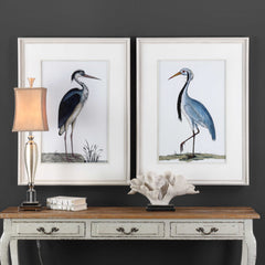 SHORE BIRDS FRAMED PRINTS