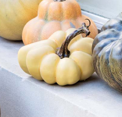 """LE POTIRON"" PUMPKIN - SMALL"