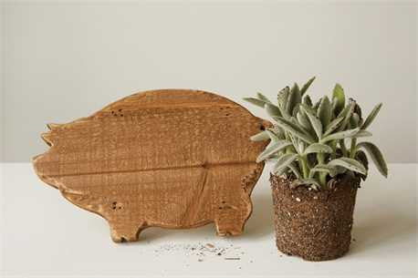PIG SHAPED BOARD