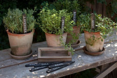 WOODEN HERBAL PLANT STAKES