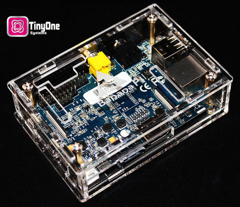 Banana Pi TinyOne Model G- Burning Man Edition -Complete System with Linux disk - This systems Ships FREE to the Burning Man Project in SF, CA