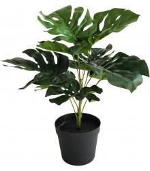 Monstera Plant 9 leaf 35cm - robcousens Outdoor Furniture Factory direct