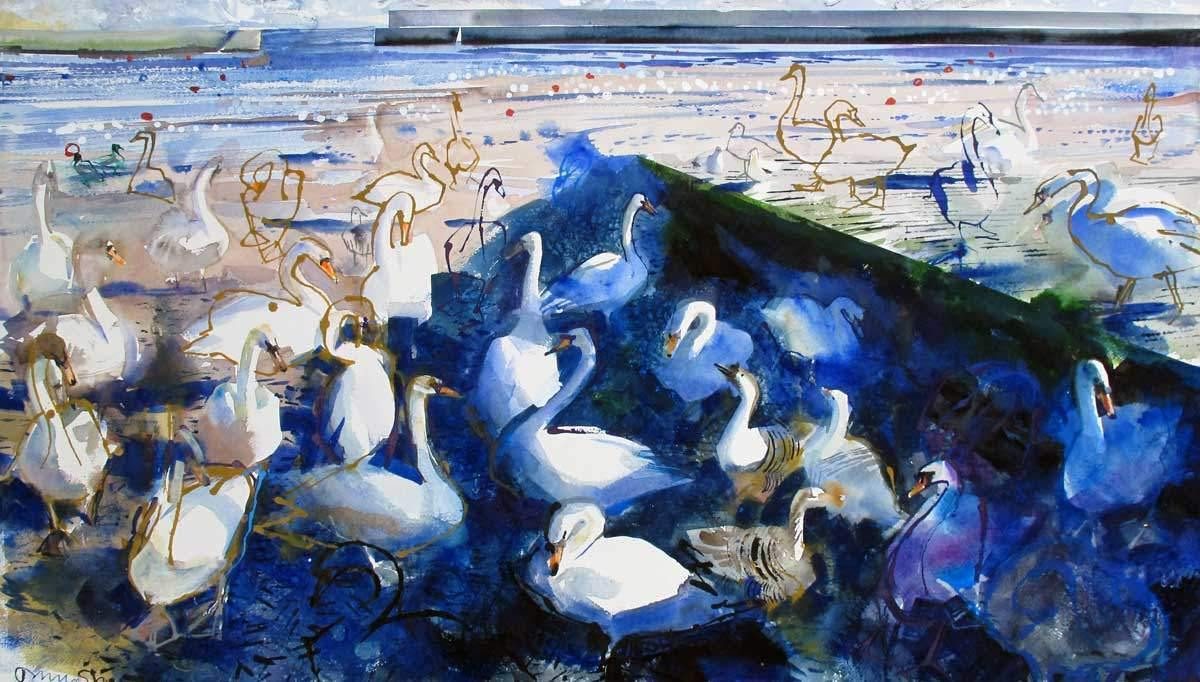 Swans & Geese In Harbour - John Short Irish Visual Artist