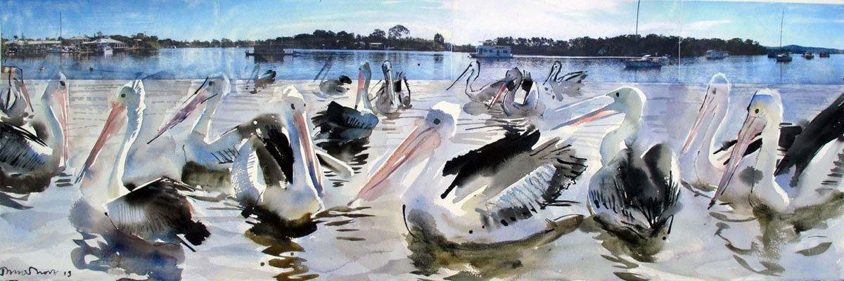 Pelicans - John Short Irish Visual Artist