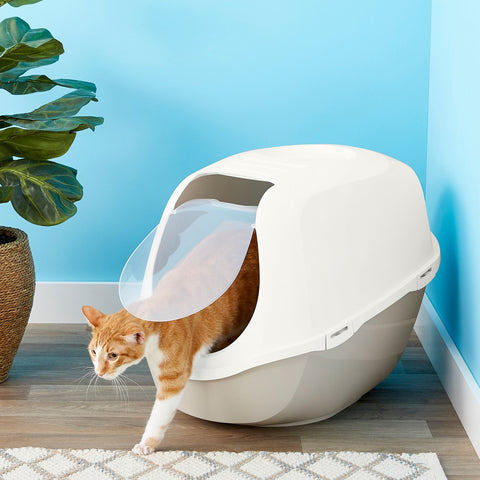 mycatadvisor-cat litter box