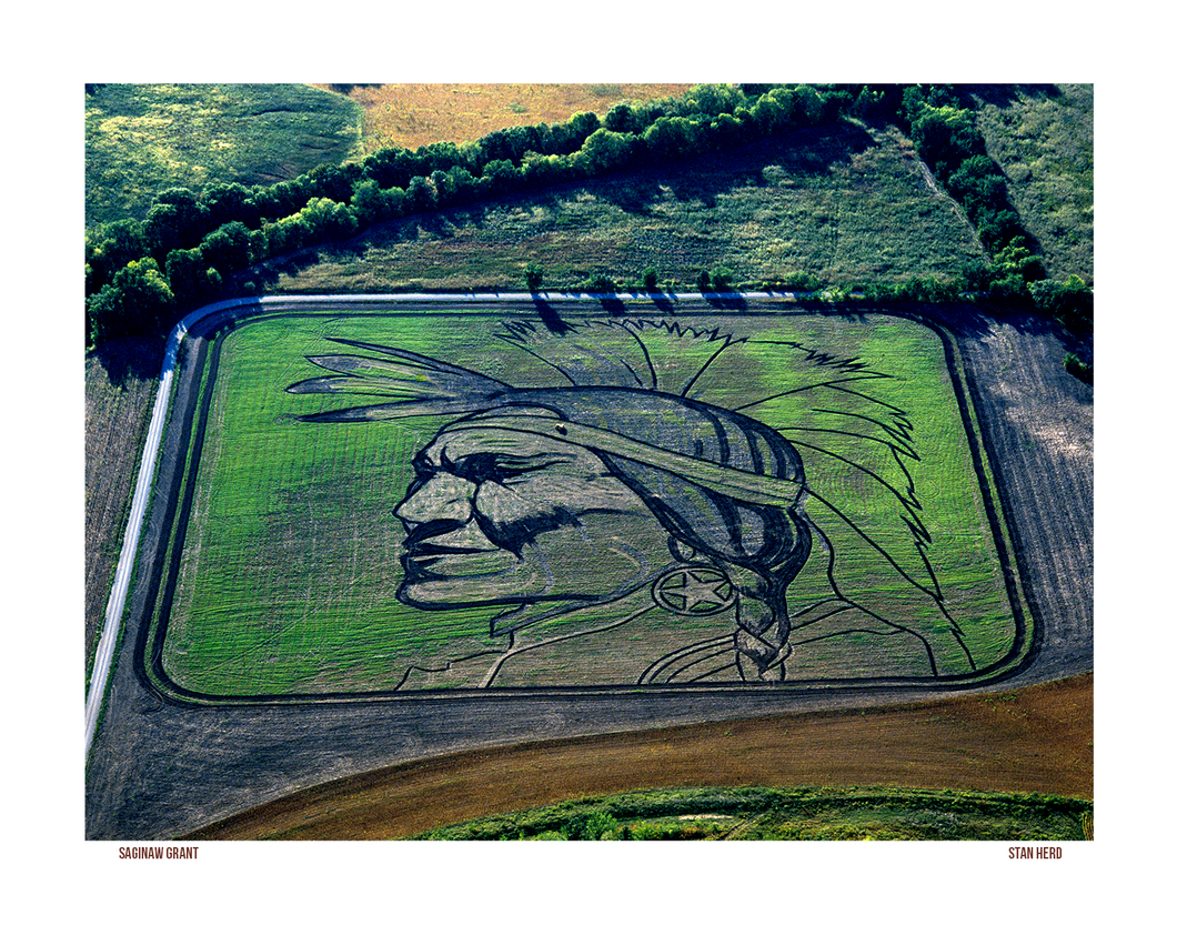 Saginaw Grant Earthwork | Stan Herd