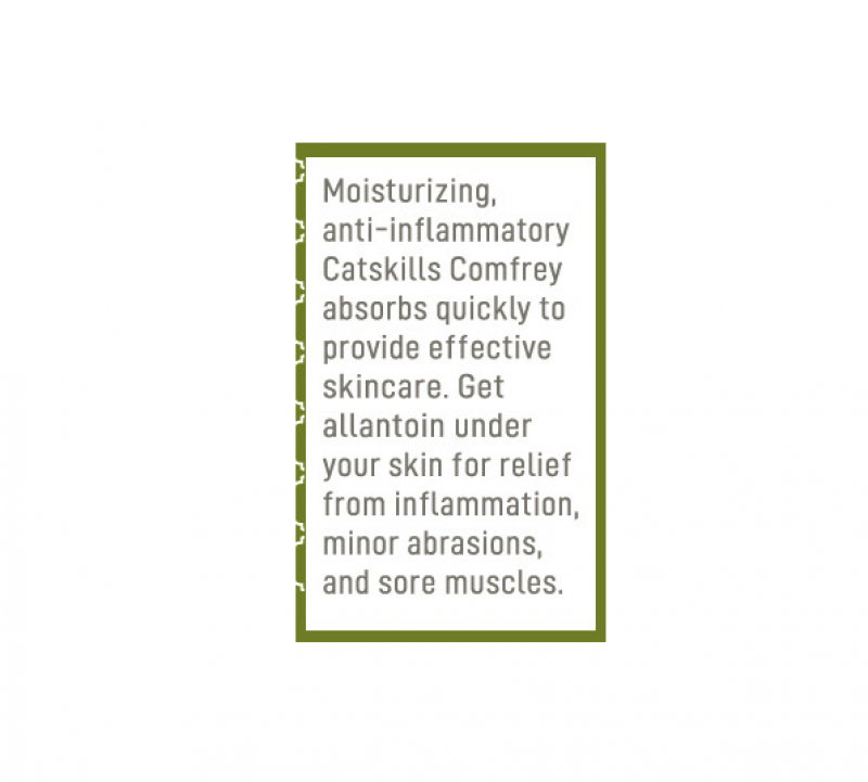 Catskills Comfrey | Original Skin Salve - wellness.global