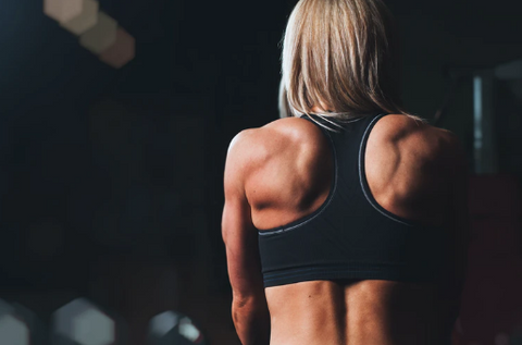 muscular womans back