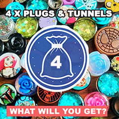 Mystery Bag of Plugs x 4  (pack of 4 plugs)