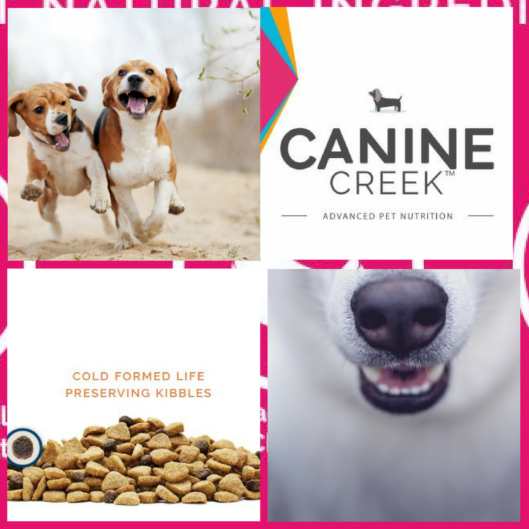 Canine Creek Cold Processed Dog Food is available @barksnlicks.com