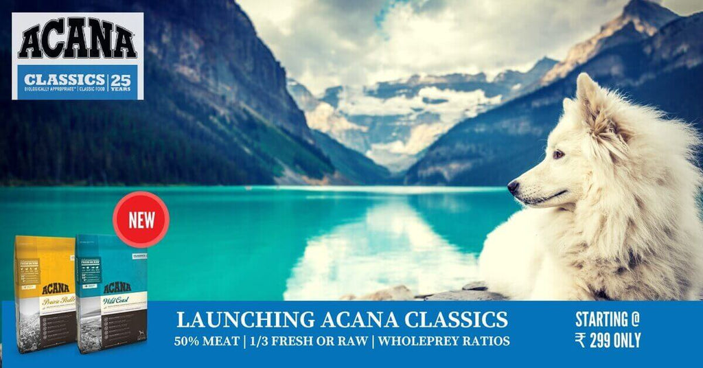 ACANA Classics dog food is available in India