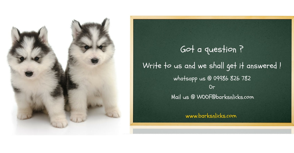 The Best Dog Food Store in India Contact Us – Barks 'n Licks
