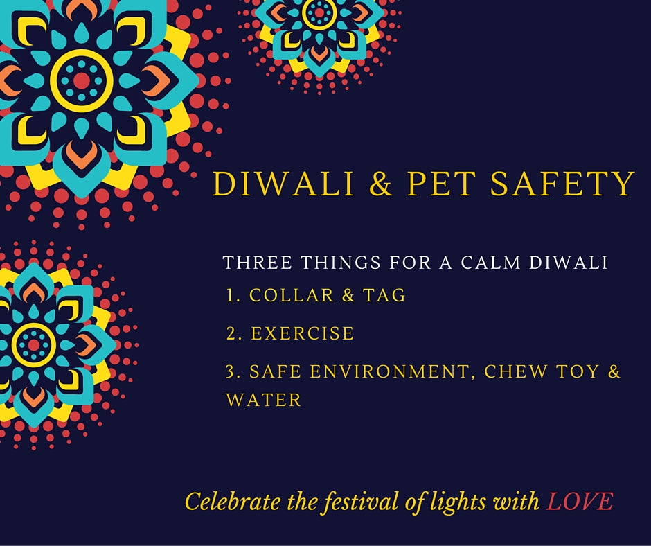 Diwali and Pet Safety tips