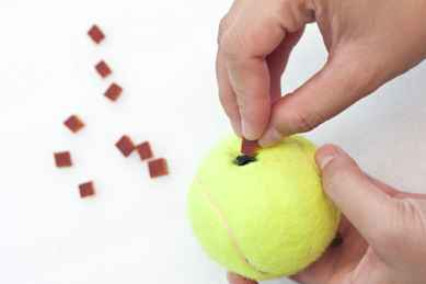 Insert the small meat jerky on the slit of the tennis ball.
