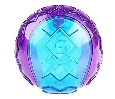 GiGwi G-BALL Transparent Blue/Purple