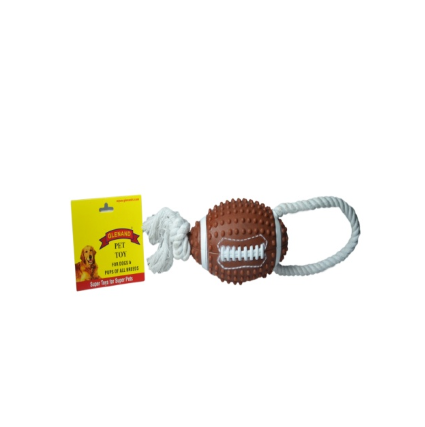 Glenand Squeaky American Football With Rope Handle - Barks and Licks