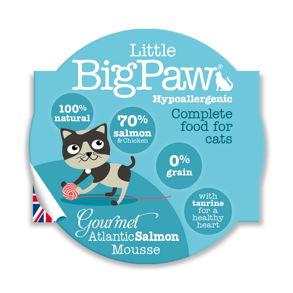 Little BigPaw Gourmet Atlantic Salmon Mousse - Barks and Licks