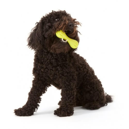 Zogoflex Hurley Dog Bone - barksnlicks  - 2