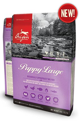 Orijen Puppy Large Dog Food - New Formula - Barks and Licks