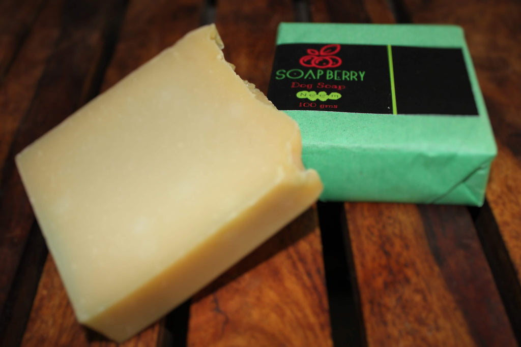 Soap Berry Anti-tick & flea Neem Dog Soap - Barks and Licks