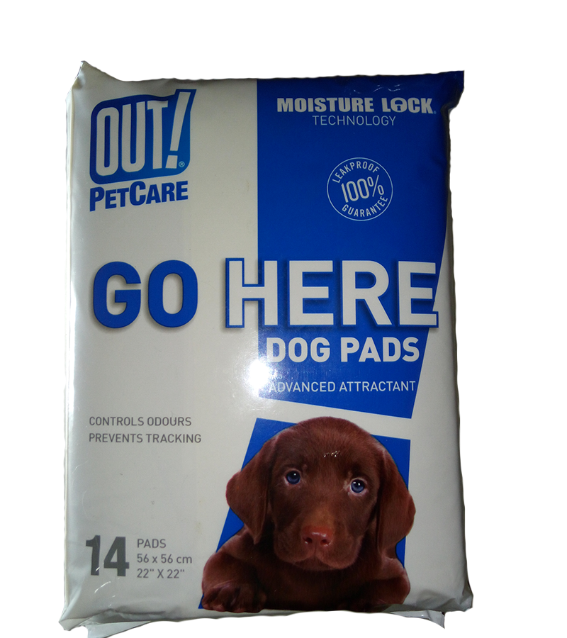 OUT! PetCare GO HERE Dog Pads - Barks and Licks