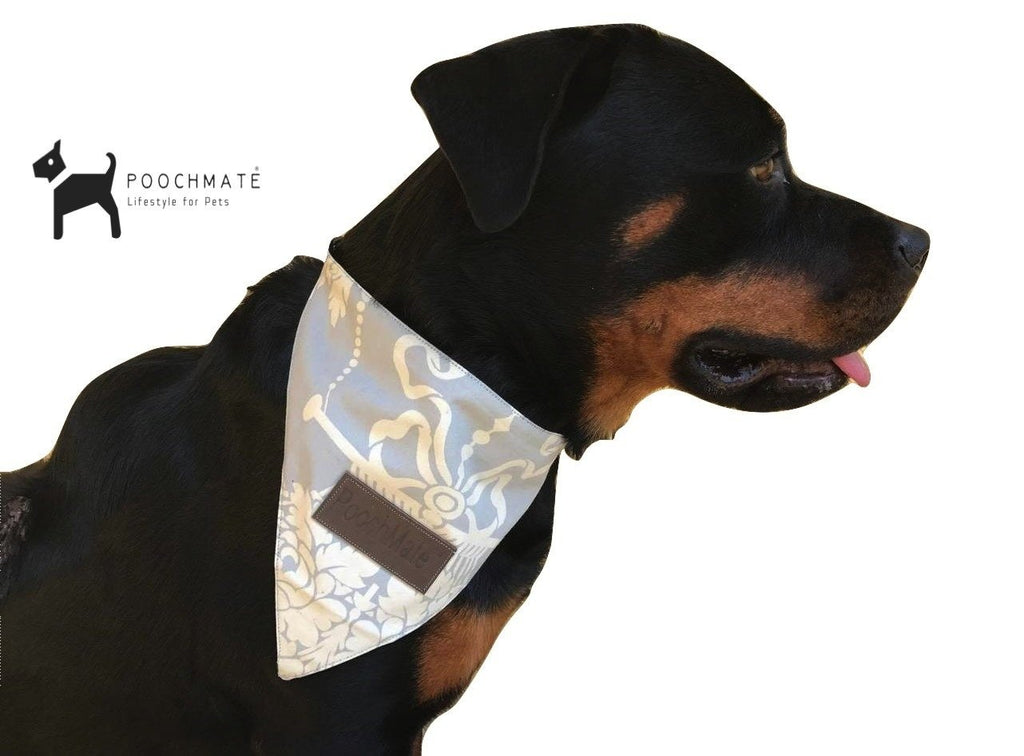 PoochMate Heritage Ivory Bandana for Dog - Barks and Licks