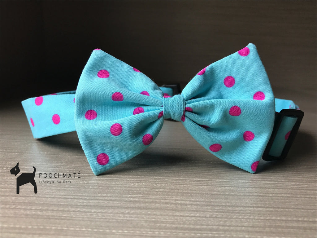 PoochMate Mint Green Dog Bow Tie - Barks and Licks