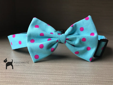 PoochMate Mint Green Dog Bow Tie