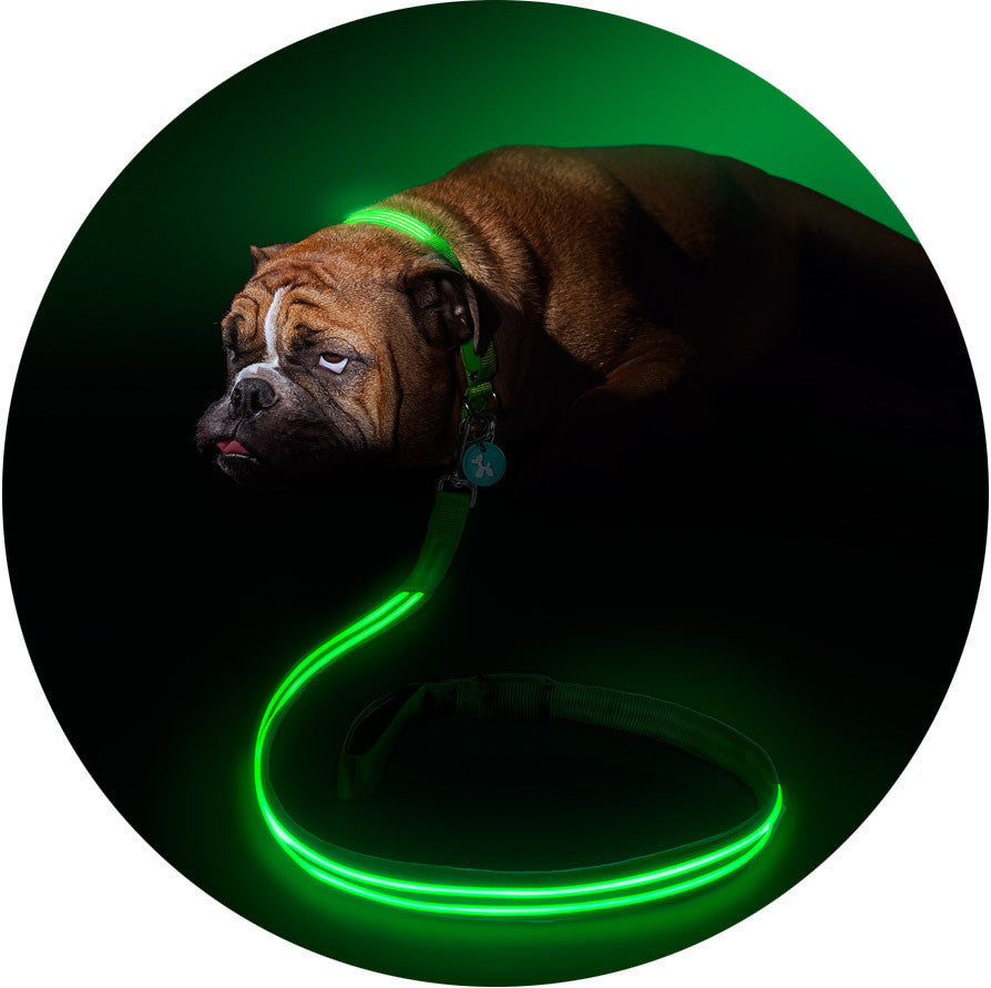 Green Gremlin Poochlight™ Light Up Flashing Dog Leash - Barks and Licks