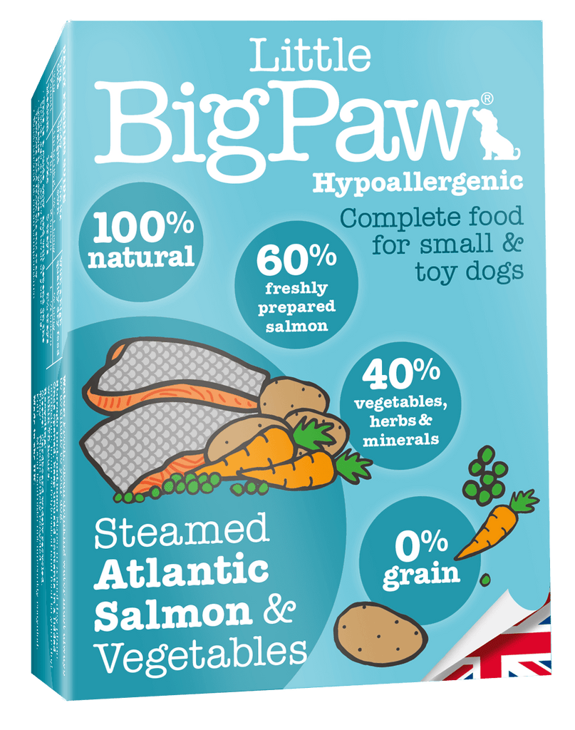 Little Big Paw Steamed Atlantic Salmon & Vegetable Terrine - Barks and Licks