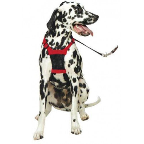 The Sporn Mesh Harness - Barks and Licks