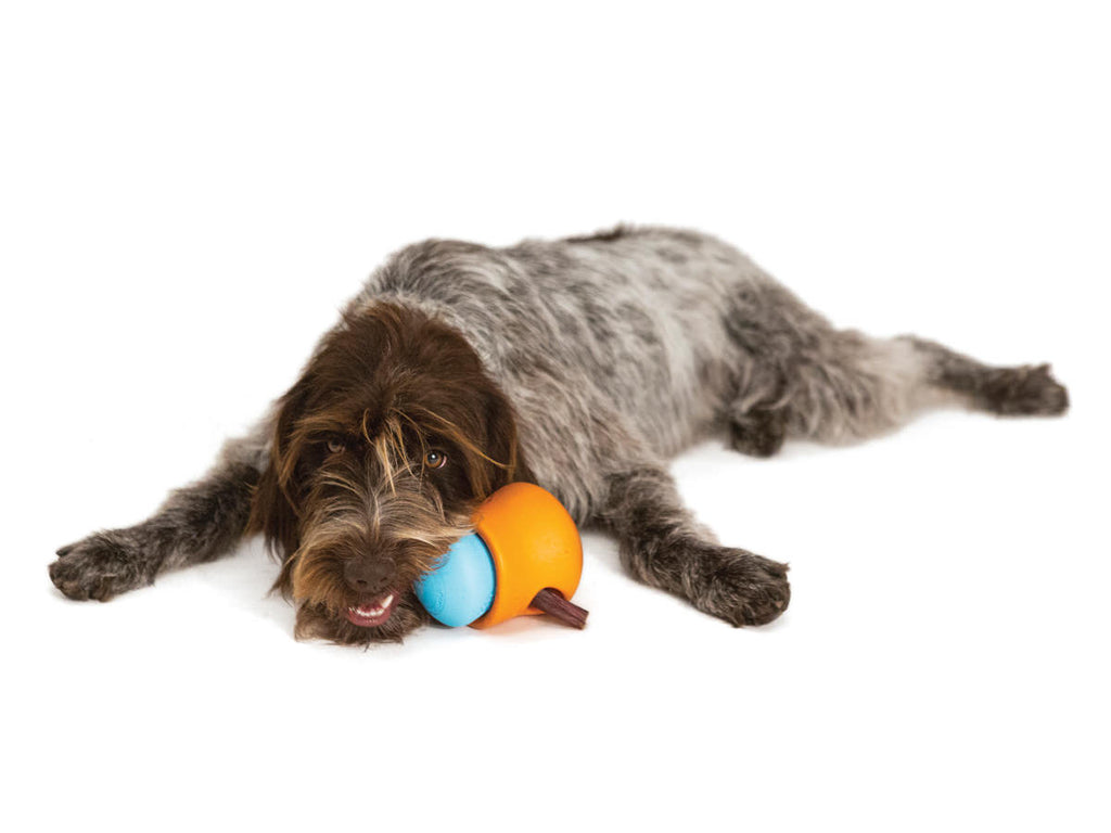 Zogoflex Toppl Treat Toy - barksnlicks  - 3
