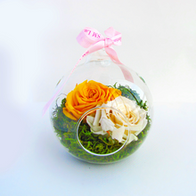 ROSE BALL TERRARIUM