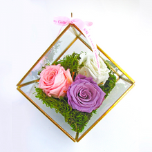 SMALL CUBE ROSE TERRARIUM