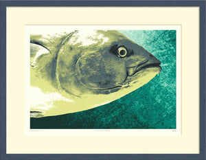 A landscape format print, Fish out of Water, shown in a frame.
