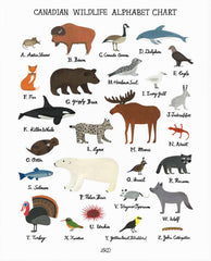 Lily Kao Design Alphabet print - Canadian Wildlife